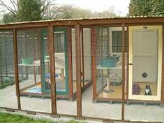 Outside View of Sylvester's Family Cattery Chalets