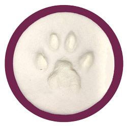 clay impression of cat paw
