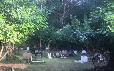 Chestnut Lodge Pet Cemetery is 50 Years Old