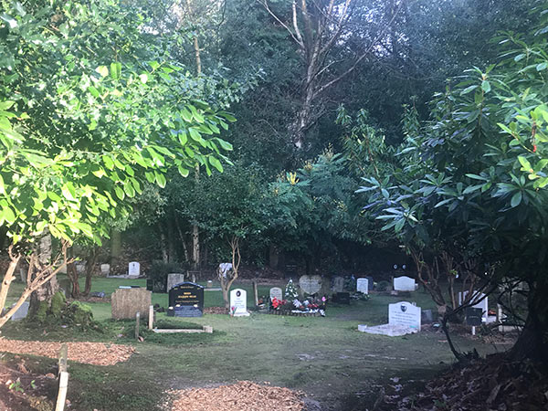 The Pet Cemetery is 50 Years Old
