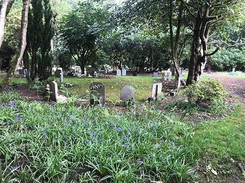 Ashes burial area in spring with bluebells